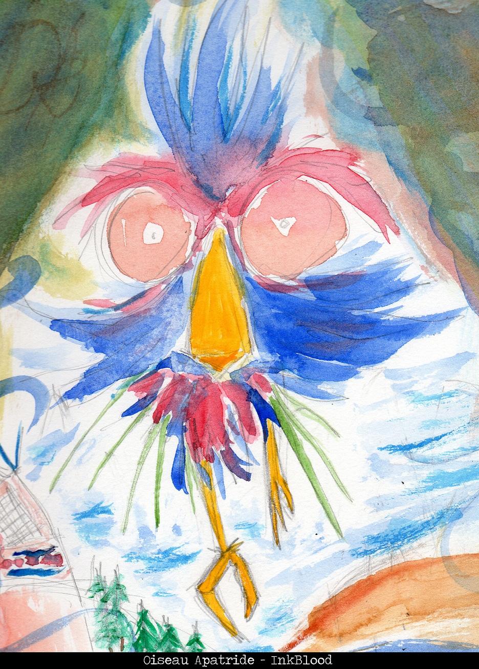 Aqua-3-Oiseau-Apatride--